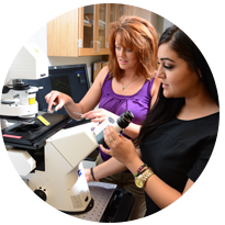 Student and professor analyzing Zeiss microscope