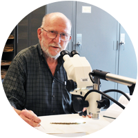 Andrew Nelson examining plant specimens in the Herbarium