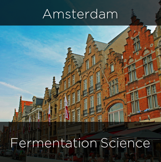 amsterdam, fermentation science