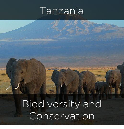 tanzania, biodiversity and conservation