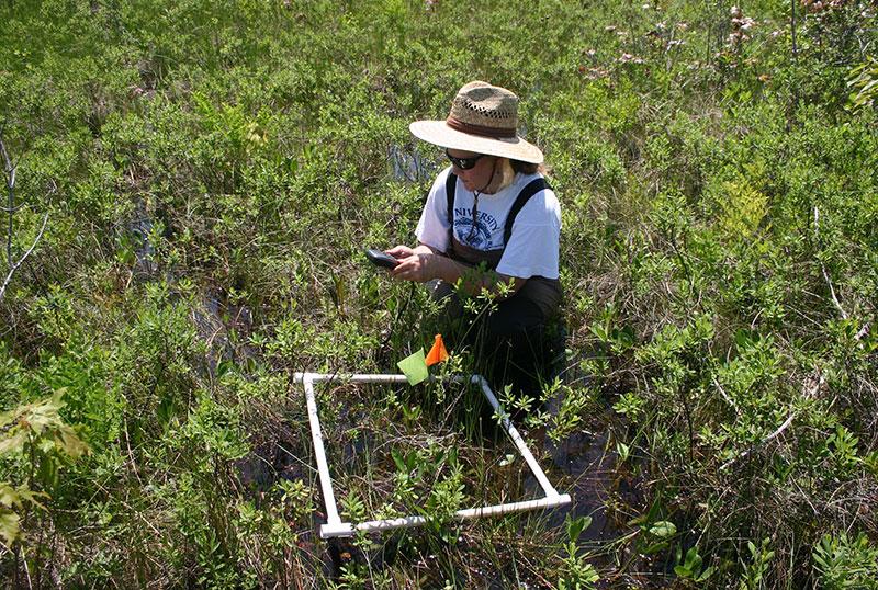 Karen Sime doing field research