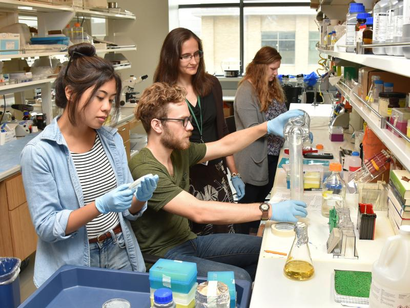 Yulia Artemenko works on a grant-funded research project with students