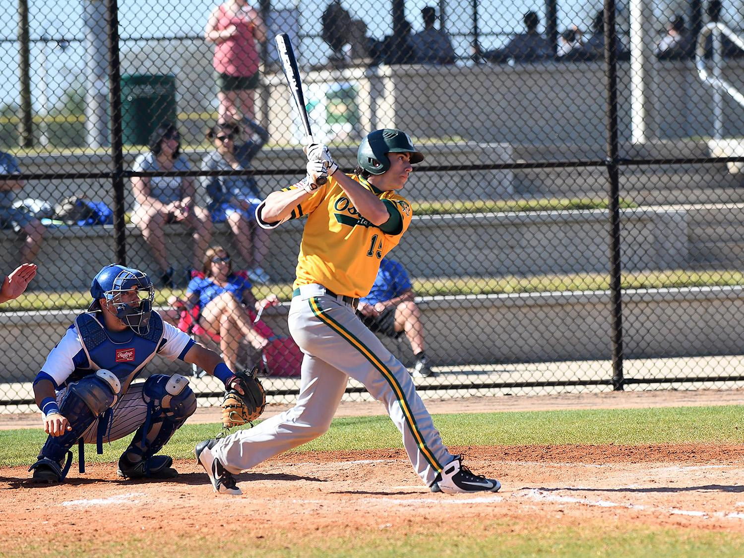 Laker baseball player Mike Dellicari raps out an extra-base hit