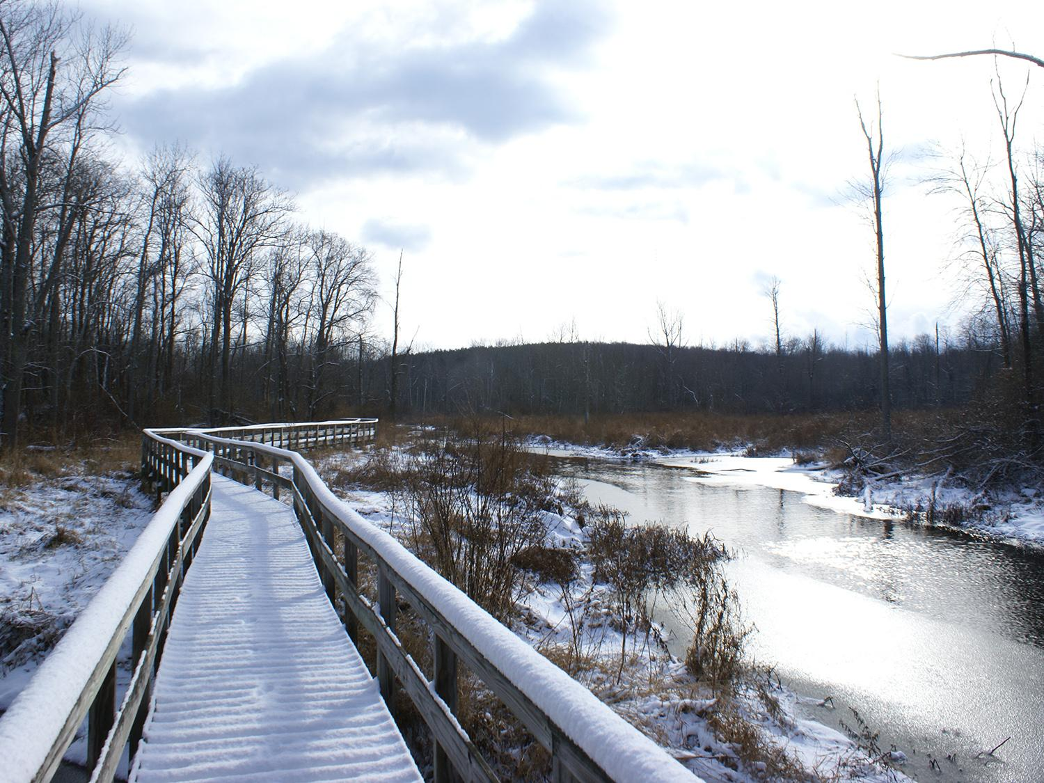 Snow on bridge across stream at Rice Creek