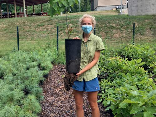 Canal Forest Restoration Project/Rice Creek intern Piper Warren with tree