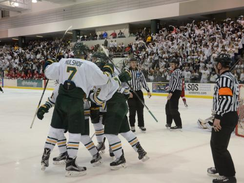 Men's hockey players celebrate goal