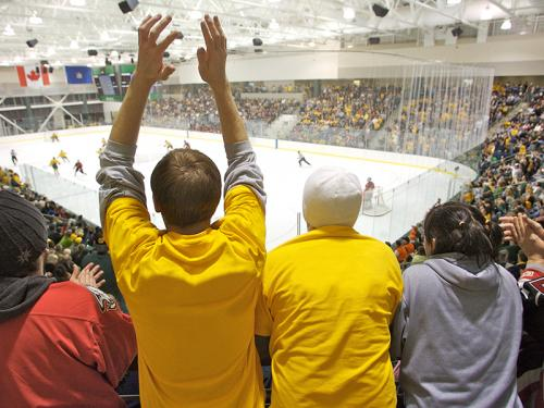 Students at a hockey game