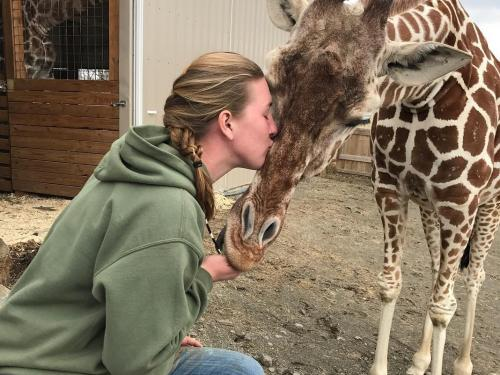Allysa Swilley kisses giraffe