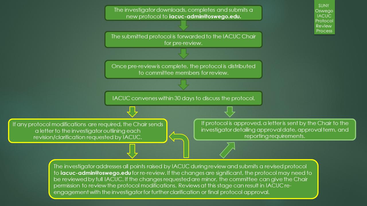 SUNY Oswego IACUC Process Flow Chart