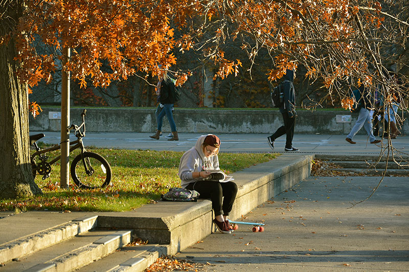 Natahley Torrese studies under the warm autumn sun