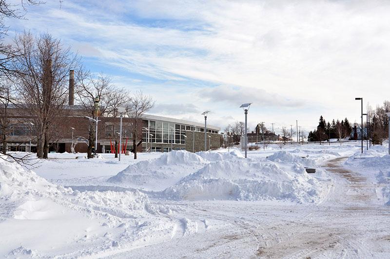 Sun shines on snowy campus