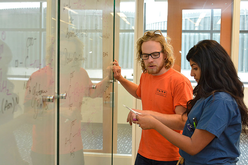 Students use glass whiteboard for biochemistry assignment