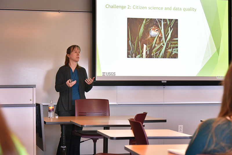 Alumna Linda Weir discusses research on migratory birds, coastal ecology and ecotoxicology