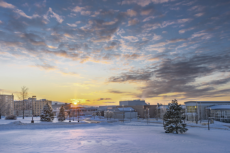 A sunset painted the snow-covered landscape of the campus on Feb. 8.