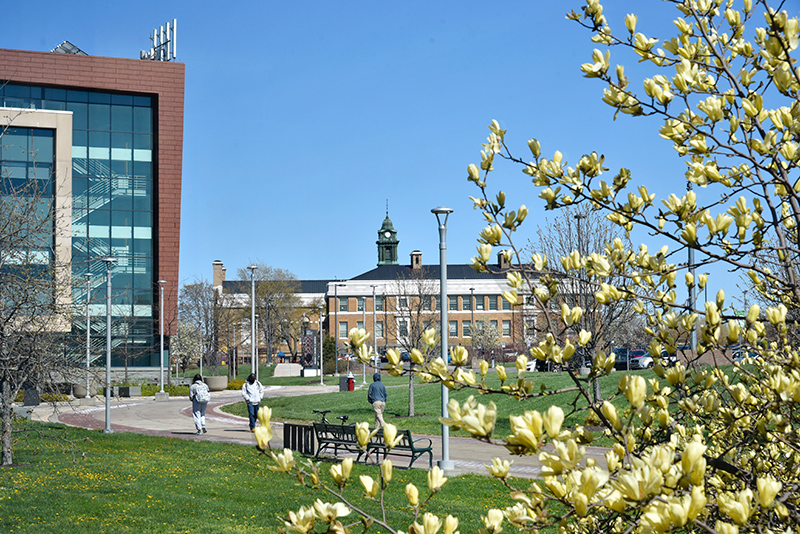 After some false starts and measurable snows, spring is in the process of finally springing, as reflected in the trees blooming near Marano Campus Center.