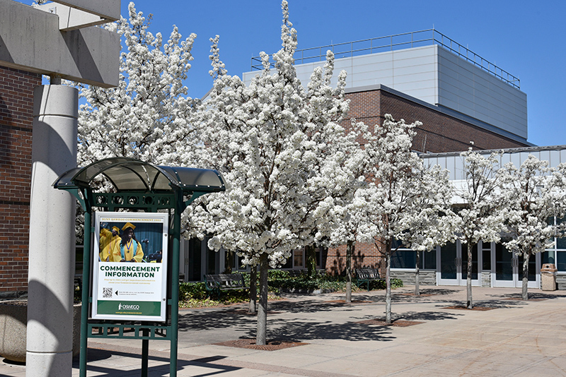 Trees bloom outside Marano Campus Center in late April, a familiar sight in time for the final weeks of classes and May Commencement ceremonies.