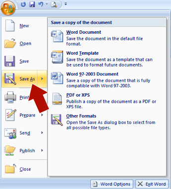 Creating a PDF file using Microsoft Word | Publications