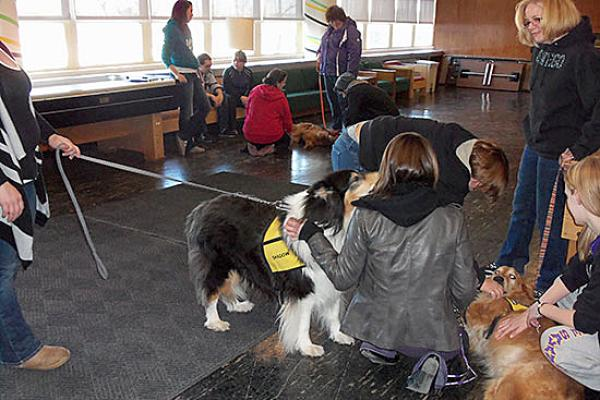Mackin Complex and Sheldon Hall (MaSh) enjoy the therapy pets' visit.