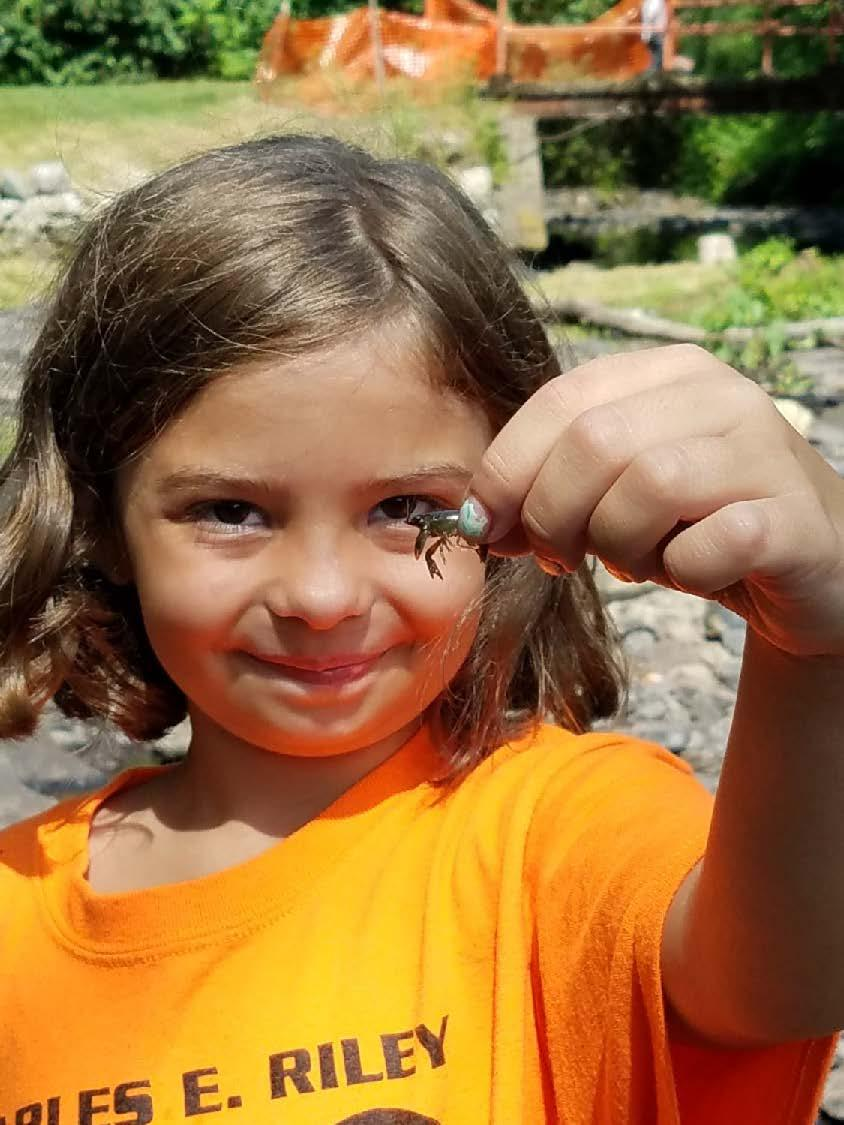 Child holding insect