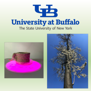 Image of sculpture that looks like a rustic, earthen mug on a magenta circle, and a photograph looking up at a flowering tree