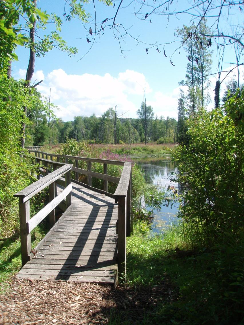 foot bridge link to about rice creek page
