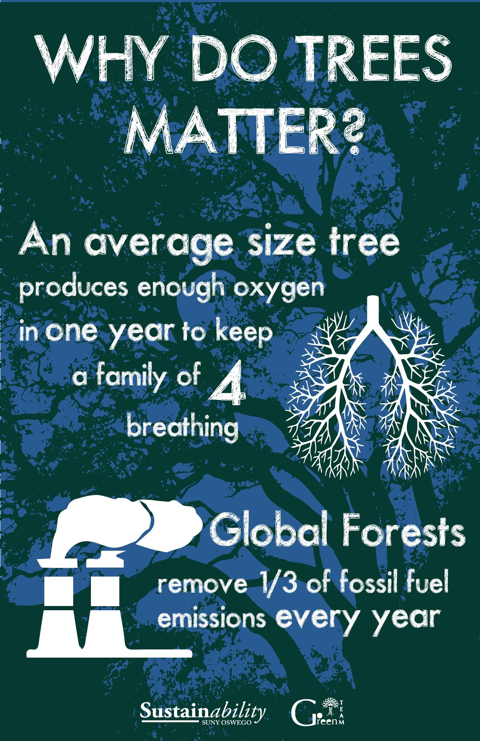 Why Do Trees Matter?: An average size tree produces enough oxygen in one year to keep a family of 4 breathing. Global forests remove 1/3 of fossil fuel emissions every year.